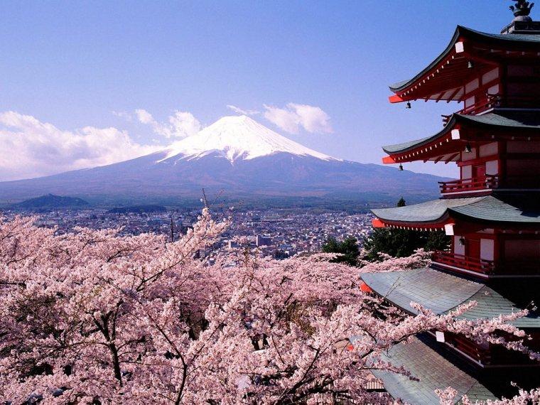 japon barbara cortes