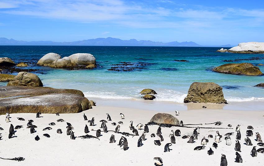 Sudafrica destino para viajar en setiembre