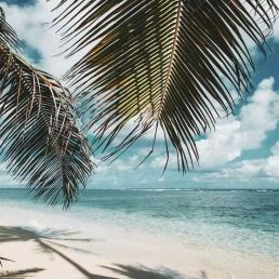 mozambique playa