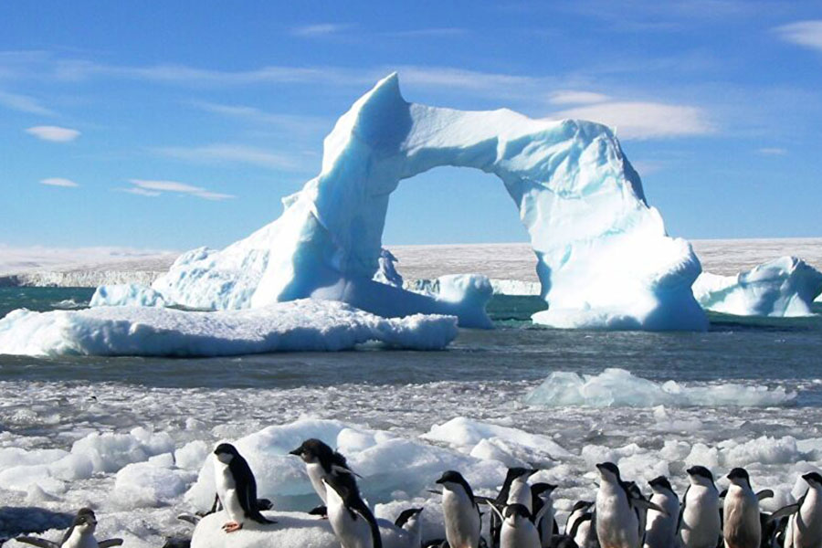 Destino exclusivo a la Antartida