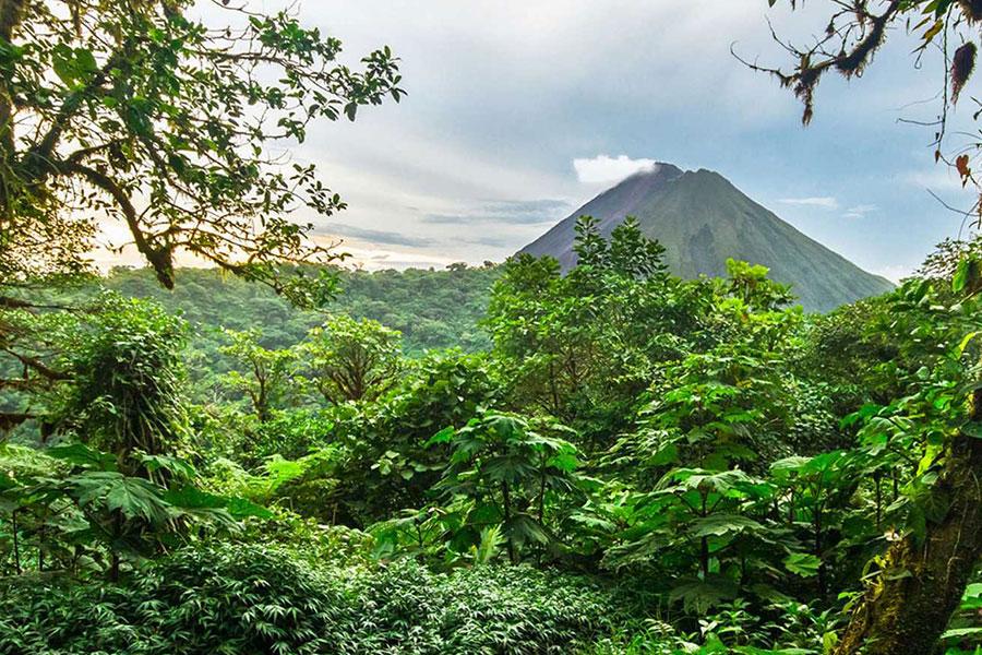 Costa Rica destino viaje con selva