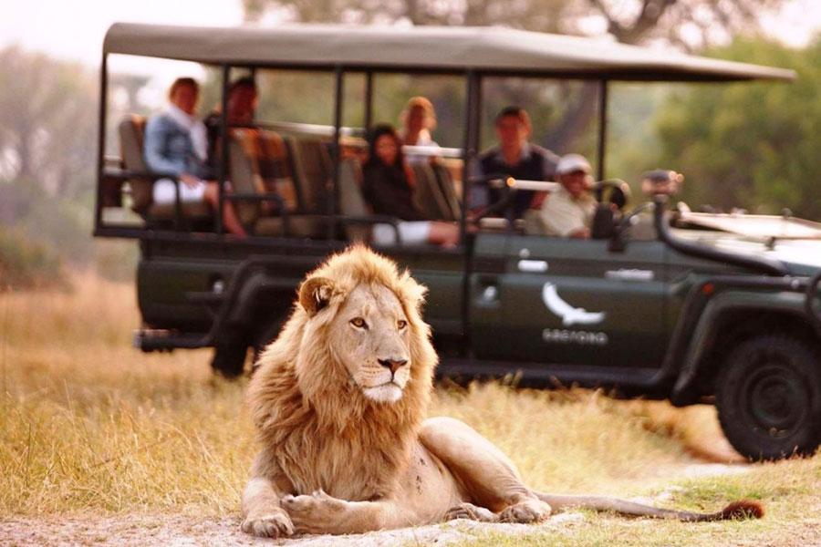 Botswana: destino para safaris de lujo